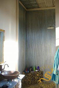 Miss Del's Apartment Renovation - Shower